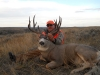 Deer Hunting & Outfitters in Montana