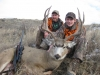 Trophy Mule Deer in Montana