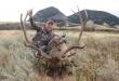 deer-hunts-montana-2017