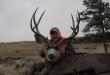 hunting-montana-2017
