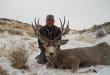 montana-deer-hunting-2017