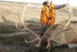 elk-deer-hunts-14