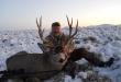 elk-deer-hunts-7